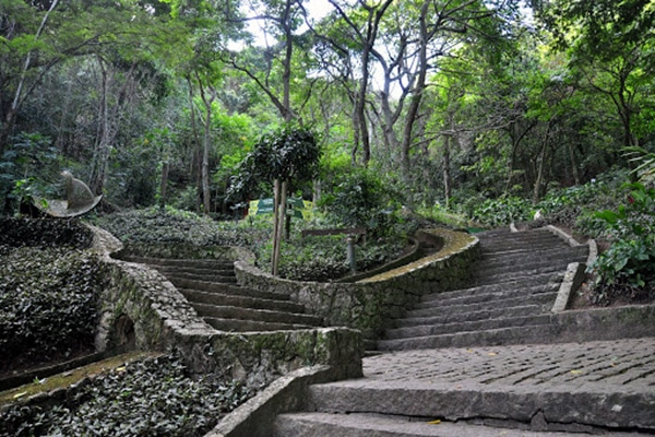 Parque municipal da catacumba no Rio de Janeiro