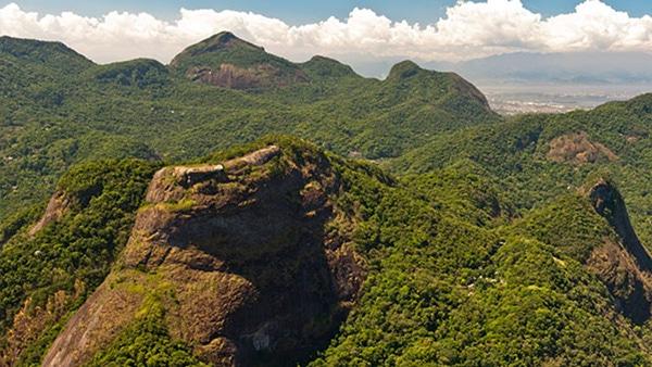 A Maior floresta Urbana fica no rio, A Floresta da Tijuca