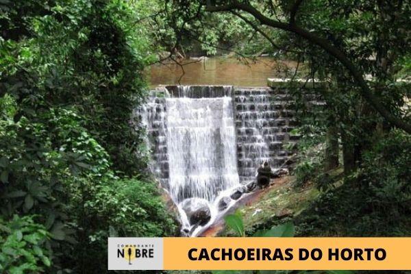 Foto de uma das cachoeiras do Horto.