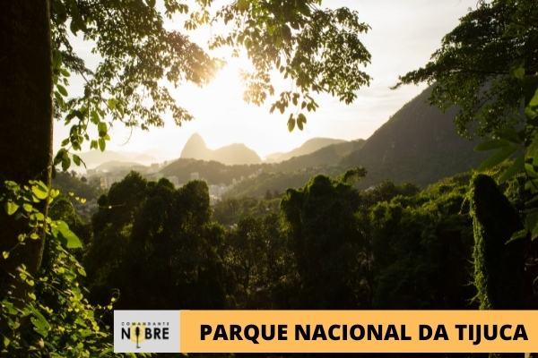 Foto com o Parque Nacional da Tijuca de fundo.