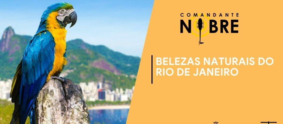 Arara Azul simbolizando a beleza natural do Rio de Janeiro