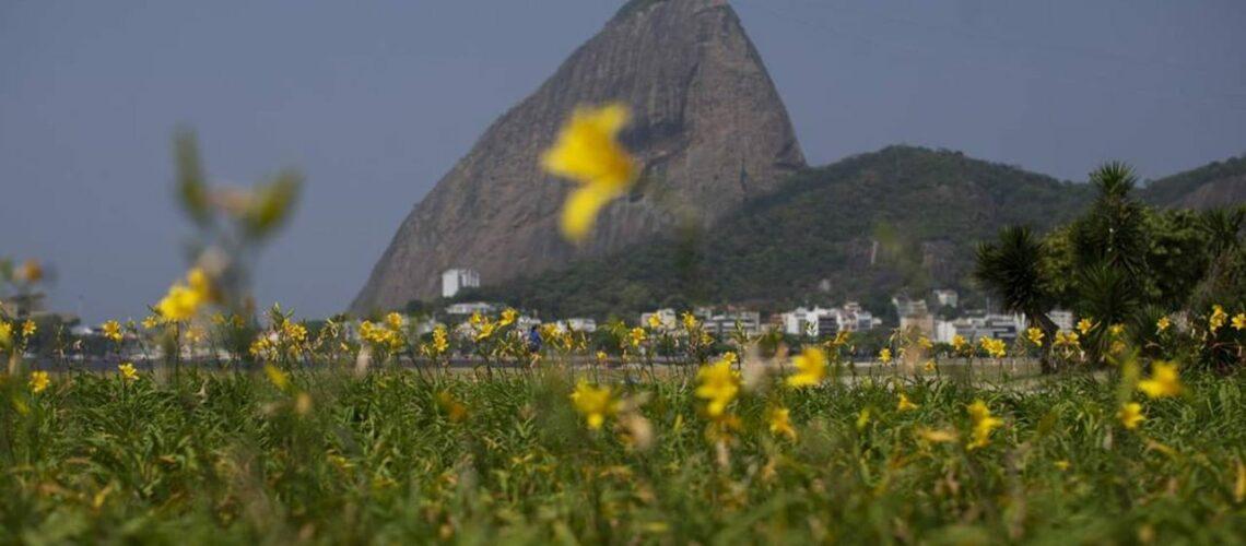 5 Melhores passeios no Rio de Janeiro na primavera